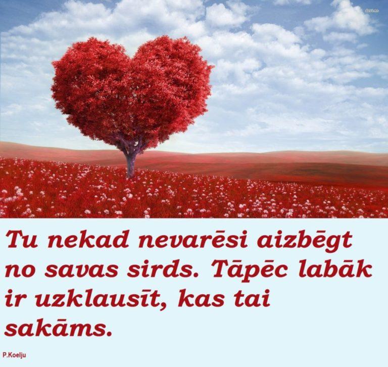 Tu nekad nevarēsi aizbēgt no savas sirds. Tāpēc labāk ir uzklausīt, kas tai sakāms.